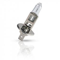 ЭРА Н1 12V 55W P14,5s (100/800/16000)
