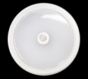 Светильник светодиодный ASD СПБ-2Д 210-10 10Вт ДД белый IP20  (12)