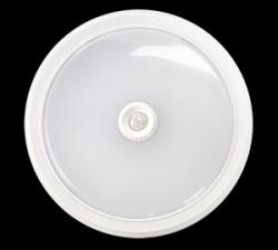 Светильник светодиодный ASD СПБ-2Д 250-14 14Вт ДД белый IP40 (1/12)