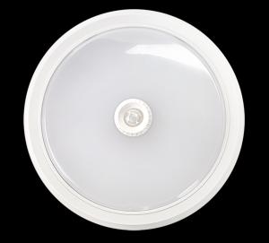 Светильник светодиодный ASD СПБ-2Д 250-14 14Вт ДД белый IP40