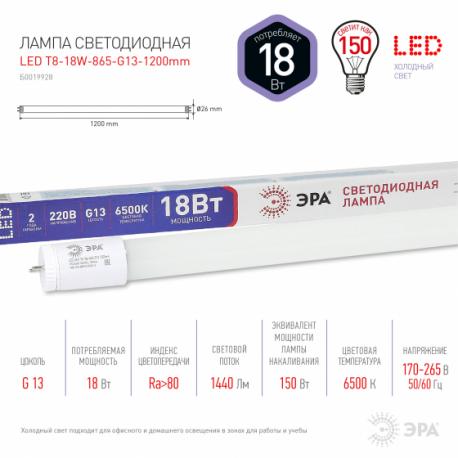 Лампа СД ЭРА SMD T8 18Вт 865 G13 1200mm 1440Лм пов.цок (25), в