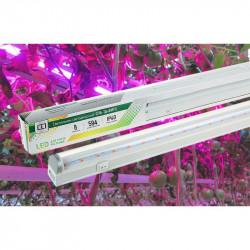 Светильник светодиодный ASD СПБ-T8-ФИТО 8Вт 230В IP40 600мм для