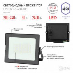 купить пермь Прожектор светодиодный ЭРА LPR-021-0-65K-030 30Вт