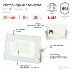 купить пермь Прожектор светодиодный ЭРА LPR-031-0-65K-010 белый