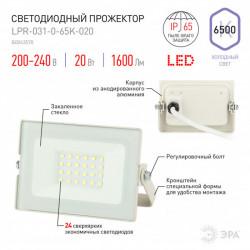 купить пермь Прожектор светодиодный ЭРА LPR-031-0-65K-020 белый